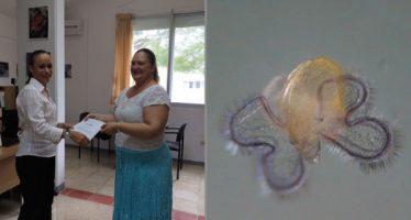 Reconoce la UNAM a investigadora por trabajo con microalgas en ciclo vital de caracol rosado (Strombus gigas)