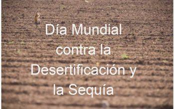 17 de junio se celebra el Día Mundial de la Lucha contra la Desertificación y la Sequía