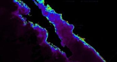 Accesible a investigadores y usuarios el Boletín Hidroclimático de los Mares de México