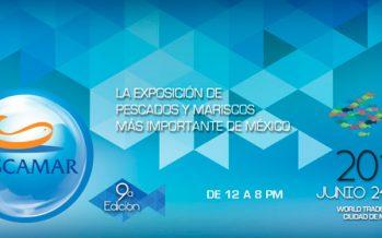 Expo Orgánicos 2015 en el World Trade Center de la Ciudad de México