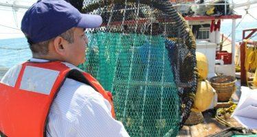 Adiestran a camaroneros mexicanos sobre construcción y uso de dispositivos excluidores de tortugas marinas