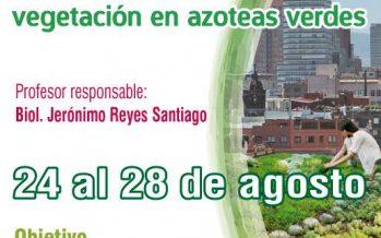 Manejo y mantenimiento de Sistemas de Naturación: vegetación en azoteas verdes