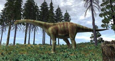 Muestran en Japón el dinosaurio más grande de Europa, descubierto en España