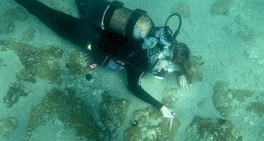 Fotos: Descubren una antigua ciudad griega de la Edad del Bronce bajo el Mediterráneo