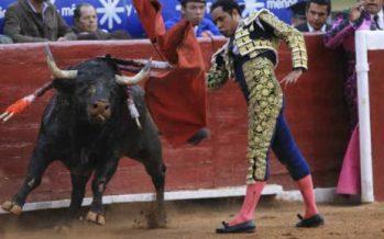Coahuila prohíbe las corridas de toros