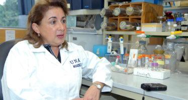 Por adaptación de moscos y virus, no falta mucho para que el chikunguña se presente en ciudades de más de 1000 msnm como el DF, revela investigadora de la UNAM