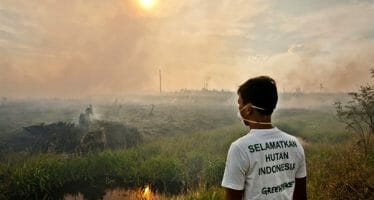 Choked in smoke, living in the thick of Indonesia's haze