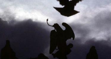 Anuncian donación para proteger al águila real