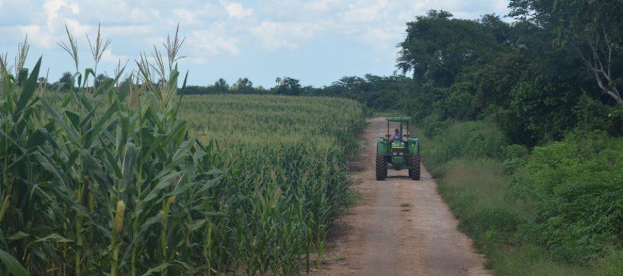 Avanza producción agrícola en México