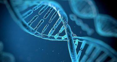 El «proyecto genoma» más ambicioso busca la predisposición a enfermedades