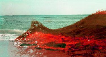 """""""Impuro"""": la fotografía de la contaminación"""