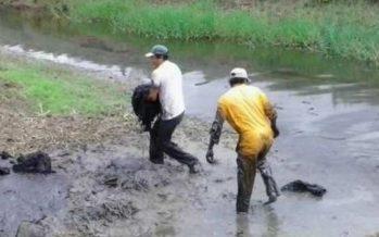 Derrame de 900 litros de la emulsión base AC-20 contamina suelo y agua del Arroyo Viejo de Campeche