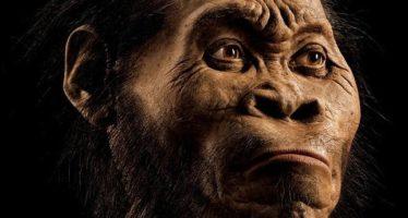 Encuentran en Africa a eslabón perdido enrtre australopithecus y hombre