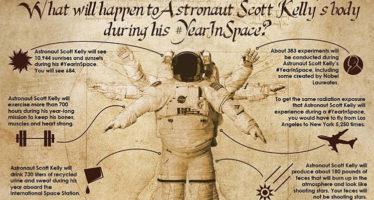 NASA cree que estrellas fugaces visibles en la tierra podrían ser deshechos biológicos de astronautas