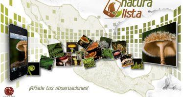 Naturista: Red social para compartir conocimientos de la biodiversidad mexicana