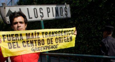 ¡Haz patria! Defiende al maíz mexicano