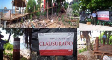 Clausura la Profepa predio en Quintana Roo por atentar contra la vida silvestre local