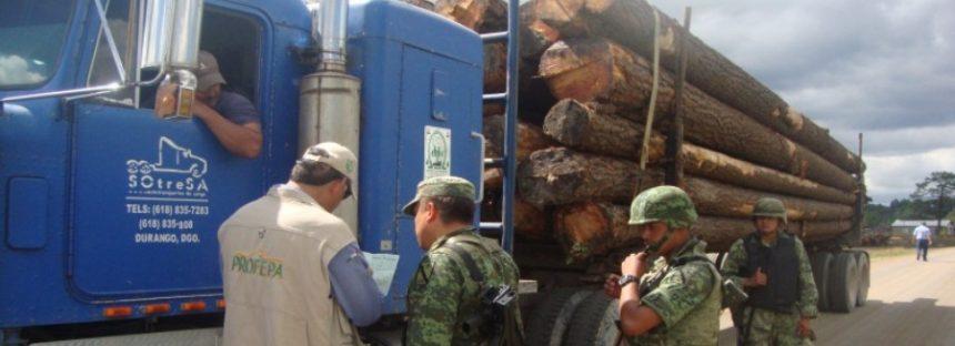 Aseguran 160 metros cúbicos de madera en Durango