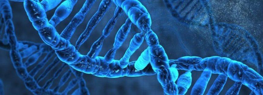 El ADN basura determina la evolución del cáncer: Estudio