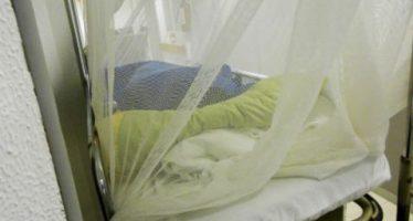 En riesgo, 70% de michoacanos de contraer chikungunya