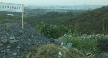 Clausuran predio por afectación forestal, en Querétaro