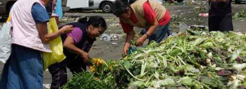 La sobrevivencia de la humanidad, en juego por demanda de alimentos. Por: Matilde Pérez