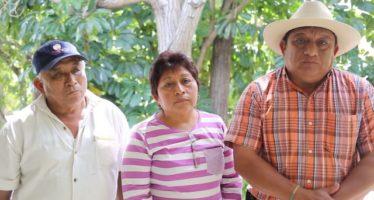 Apicultores Mayas entregan 63 mil firmas para impedir transgénicos de Monsanto