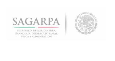 Transparencia en el sector agropecuario