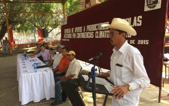 Entregan apoyo a productores afectados por fenómenos climatológicos
