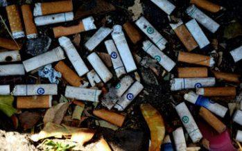 Alertan daño ambiental por tirar colillas de cigarro