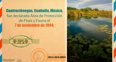 Cuatrociénegas: Área de Protección de Flora y Fauna