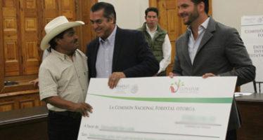 Entregan inventario forestal y apoyo para reforestación, en Nuevo León