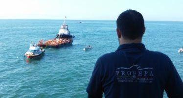 """Darán inicio a trasiego de hidrocarburos del buque """"Los Llanitos"""""""
