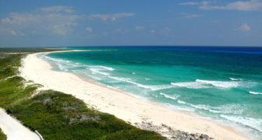 El Gobierno está rebasado: ecólogo llama a reforzar la protección de los mares