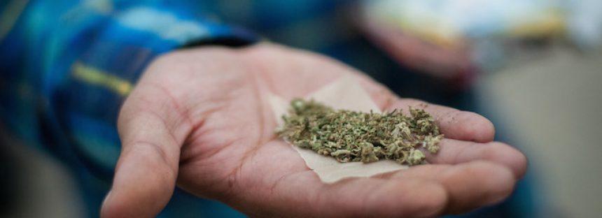 Lo que debe saber acerca de la histórica decisión de la SCJN sobre la mariguana