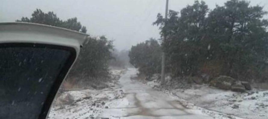 Cae la primera nevada de la temporada en Sonora