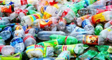 Ladrillos sustentables de PET hechos con botellas