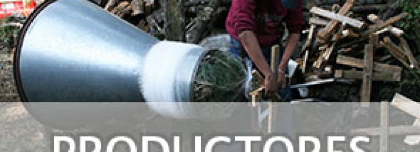Directorio de productores mexicanos de árboles de Navidad