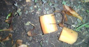 Salchichas con clavos, en Morelia