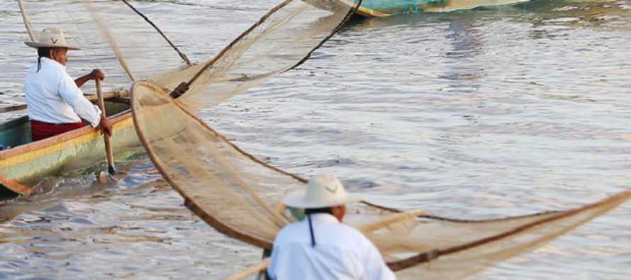 En declive, la pesca en el Lago de Pátzcuaro, dicen investigadores