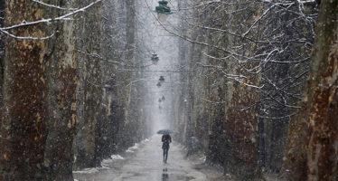 Los científicos revelan por qué enero es el mes con la mortalidad más alta del año