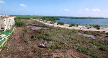 Suspenden temporalmente obras en manglares de Cancún