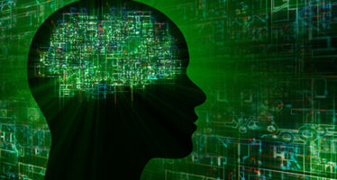 Razón o emoción: desmienten el principal mito sobre el cerebro