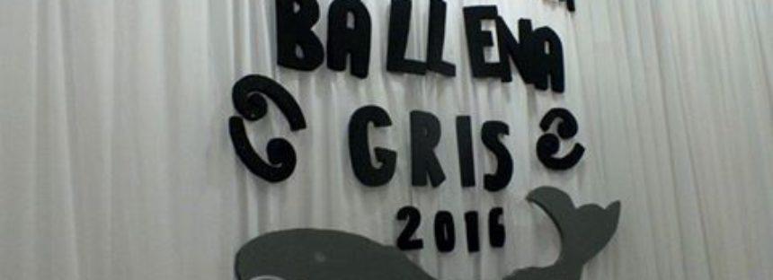 Festival de la Ballena Gris 2016 en Guerrero Negro, Baja California Sur