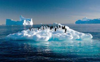 Cambio climático causará daños por 100 mil millones de dólares en América Latina