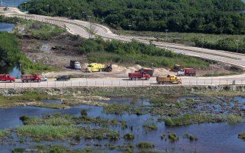Ya es oficial: Concede juez suspensión a obras que destruyen manglar de Tajamar