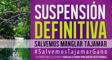 Obras destructivas del manglar de Tajamar en Cancún se suspenden definitivamente por resolución del Juzgado de Distrito