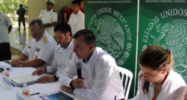 PROTEGE PROFEPA A 1.8 MILLONES DE TORTUGAS MARINAS DURANTE OPERATIVO EN TEMPORADA 2015-2016