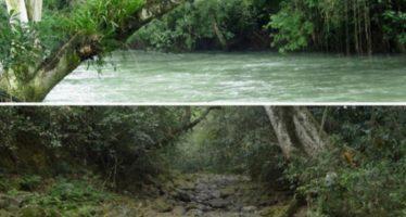 México: Un río desapareció de un día para el otro