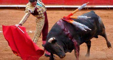 España: Llaman a abolir las corridas de toros en Galicia